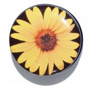 Image of Sunflower Flesh Plugs