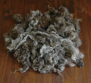 Image of Organic Silver Loose Curls