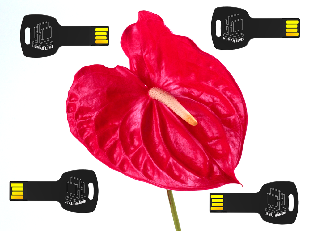 "Image of ""Gender Baby"" Maxi Single EP - Flower + USB"