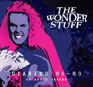 Image of The Wonder Stuff Diaries '86 - '89 An Audio Teaser CD