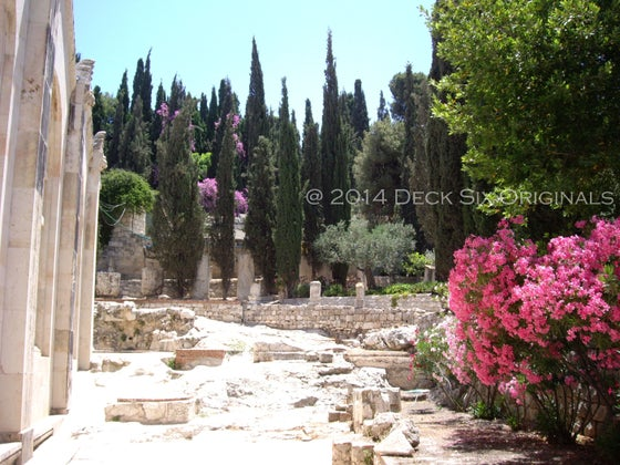 Image of  Jerusalem Garden
