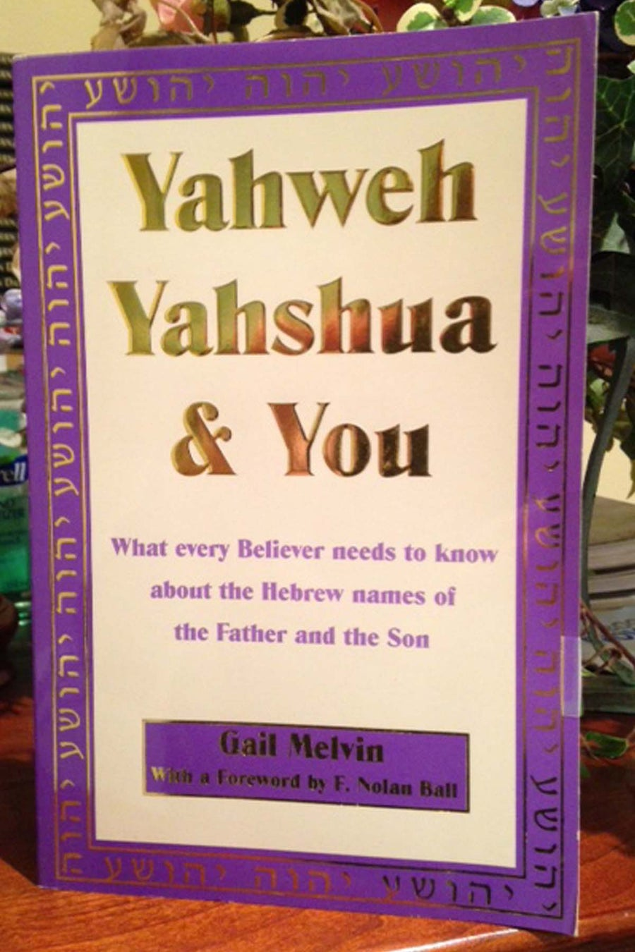 Image of Yahweh Yahshua and You