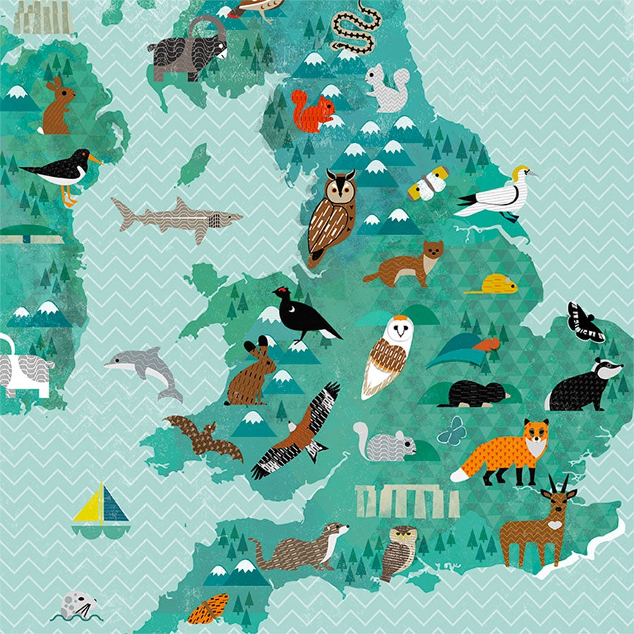 A2 Wildlife of the British Isles Map   Kate McLelland