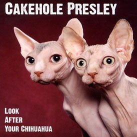 Image of Cakehole Presley  - Look After Your Chihuahua CD