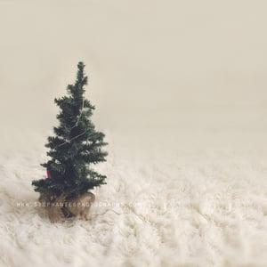 Image of Studio Holiday Minis