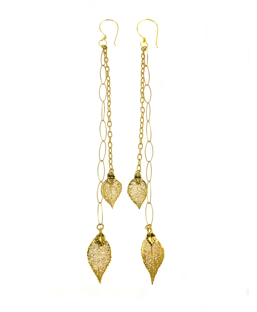 Image of Real Evergreen Earrings Preserved in 24k Gold with Gold Chain