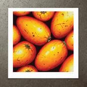 Image of Endiandra Montana - Art Print