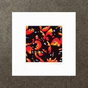 Image of Cassine Australis Var. - Art Print