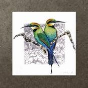 Image of Rainbow Bee Eater - Art Print