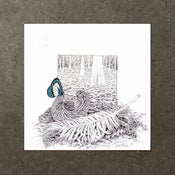 Image of Forest Floor - Study I - Art Print