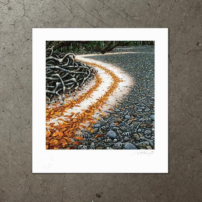Image of Calophyllum Tide - Art Print