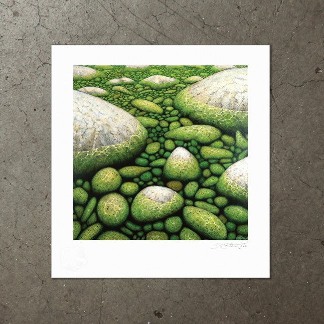 Image of Water and Stone - Art Print