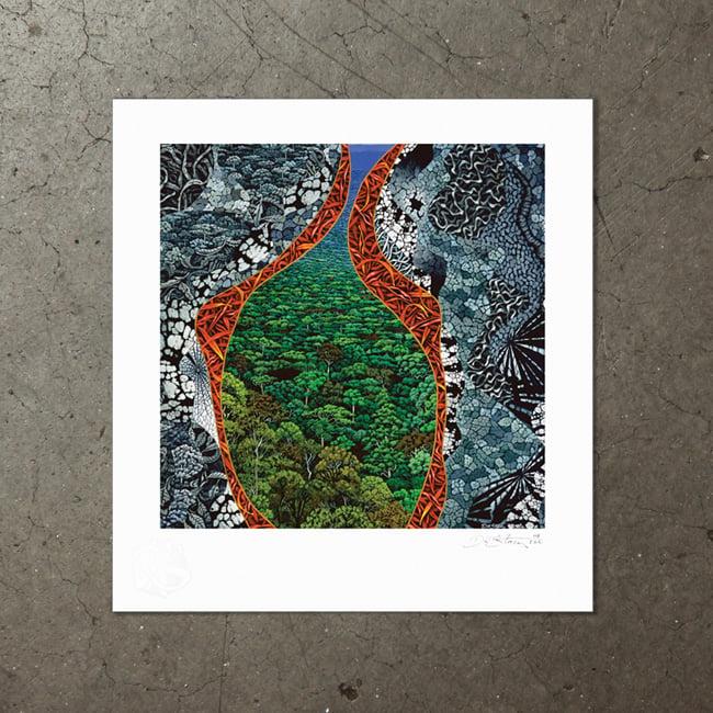 Image of Birds Eye View - Art Print