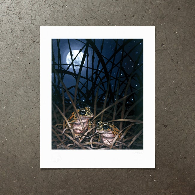 Image of Moonlight Romance - Art Print