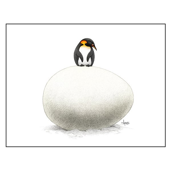 The Daily ZooMart Waiting Penguin Print
