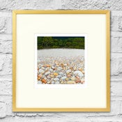 Image of Pebble Beach - Framed Print