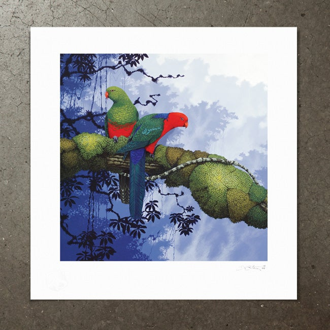 Image of King Parrots - Art Print