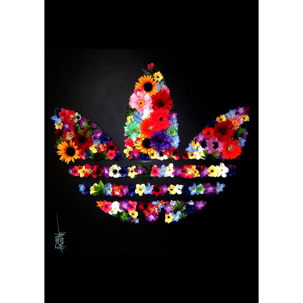 Image of Adidas Original ( Limited Edition Print)