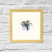 Image of Rainbow Bee Eater - Framed Print