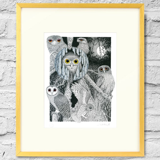 Image of Owl Study - Framed Print