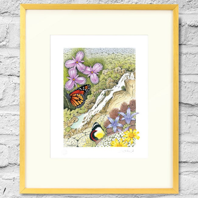 Image of Davies Creek Falls - Framed Print