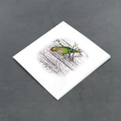Image of Varied Lorikeet - Miniature