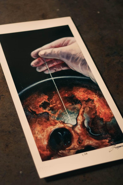 "Image of ""Suspension"" (Print)"