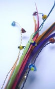 Image of Multi coloured Feather Sweep Frou Frou (Fascinator)