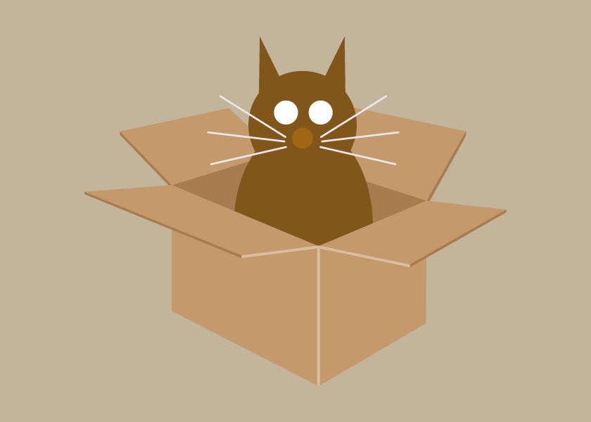 Cat in Box Collection