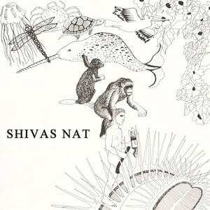"Image of Shivas Nat - Gimme Your b/w Love Bug -- colored vinyl 7"""