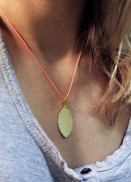 Image of little leaf_nicotiana tabacum_grüngold