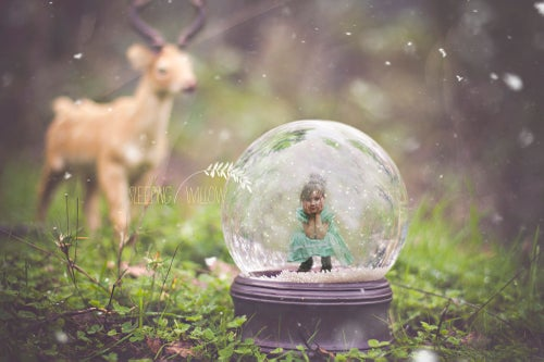 Image of A Winter Woodland - Digital Snow Globe Template