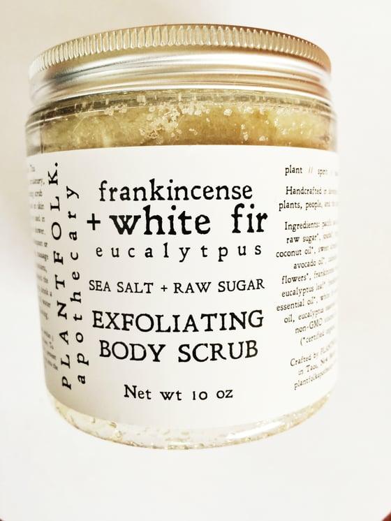 Image of frankincense + white fir & eucalyptus body scrub