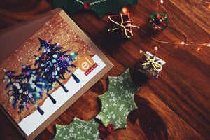 Image of A really rather lovely festive photoshoot package.