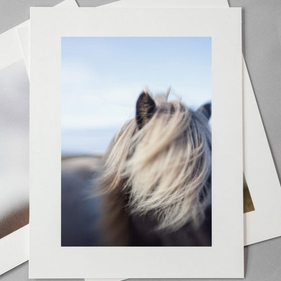 Image of ISLAND MANE // PHOTOGRAPH