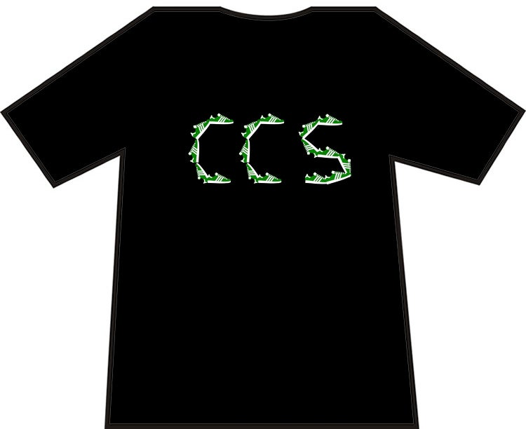 Hibs, Hibernian, CCS, Capital City Service Trainers, Casuals, Football Hooligans T-shirt