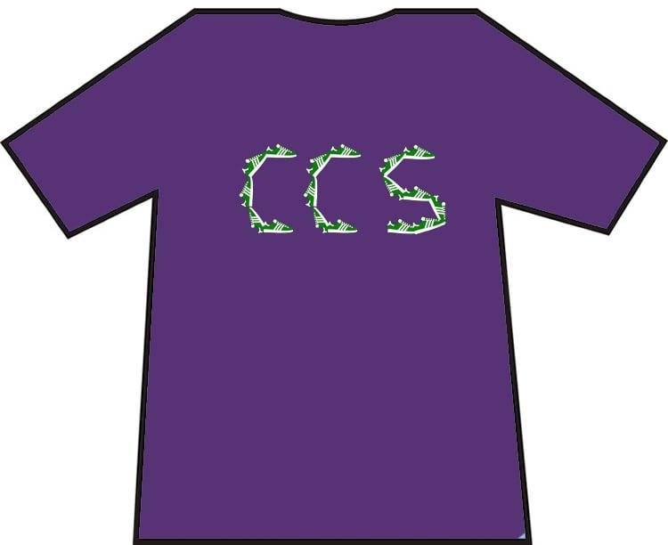 Image of Hibs, Hibernian, CCS, Capital City Service Trainers, Casuals, Football Hooligans T-shirt