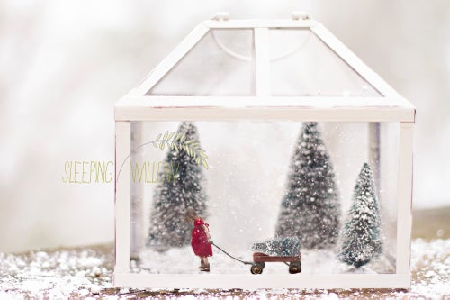 Image of Christmas Tree Farm - Digital Template