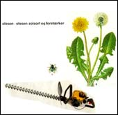 Image of Olesen-Olesen: Solsort og forstærker [cd]