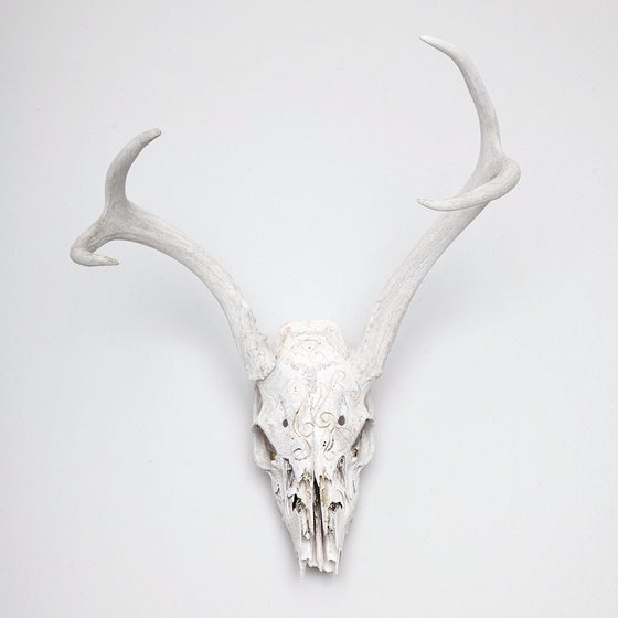 Image of HAND CARVED SKULL // TURNER