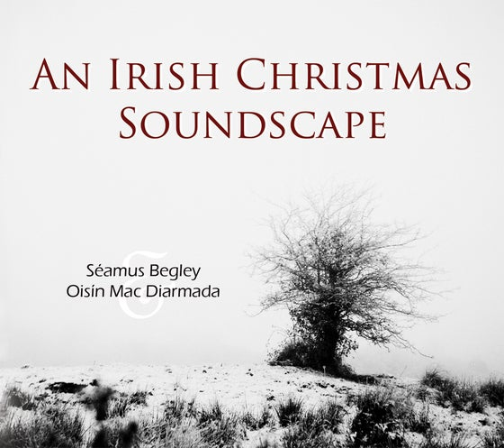 Image of CD: An Irish Christmas Soundscape - Séamus Begley & Oisín Mac Diarmada