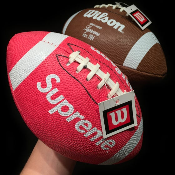 Image of 2010 Wilson Mini Football