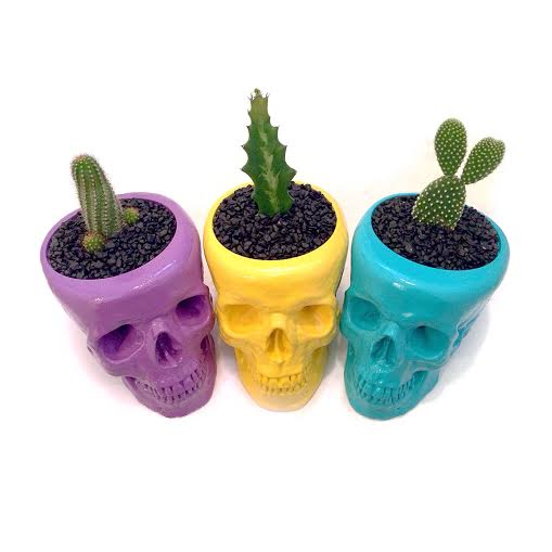 Image of Pot Skulls