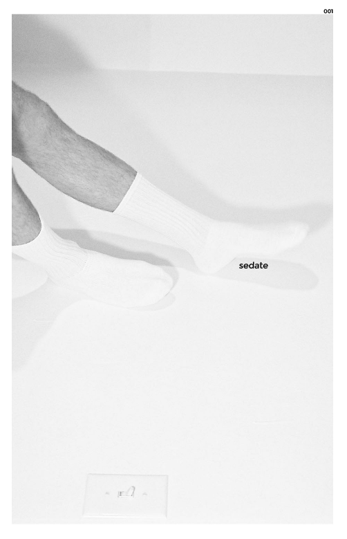 "Image of Issue 001 of Sedate Zine ""The Male Gaze"""