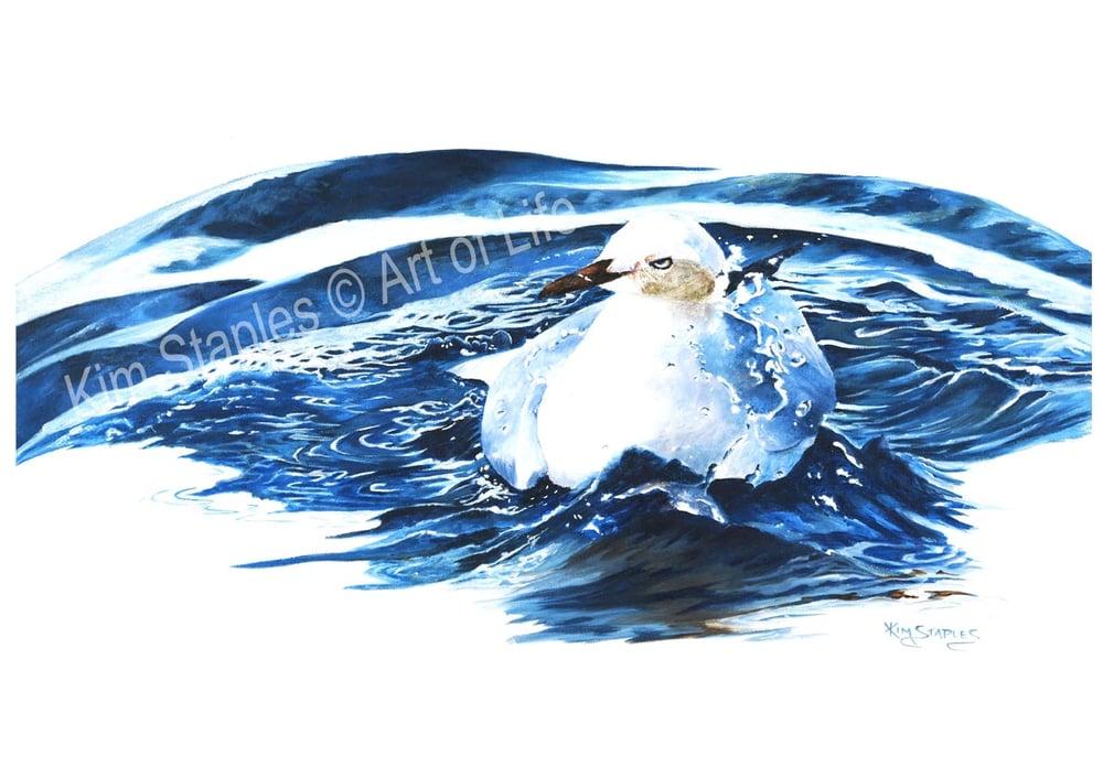 Image of Seagull bath time - PRINT