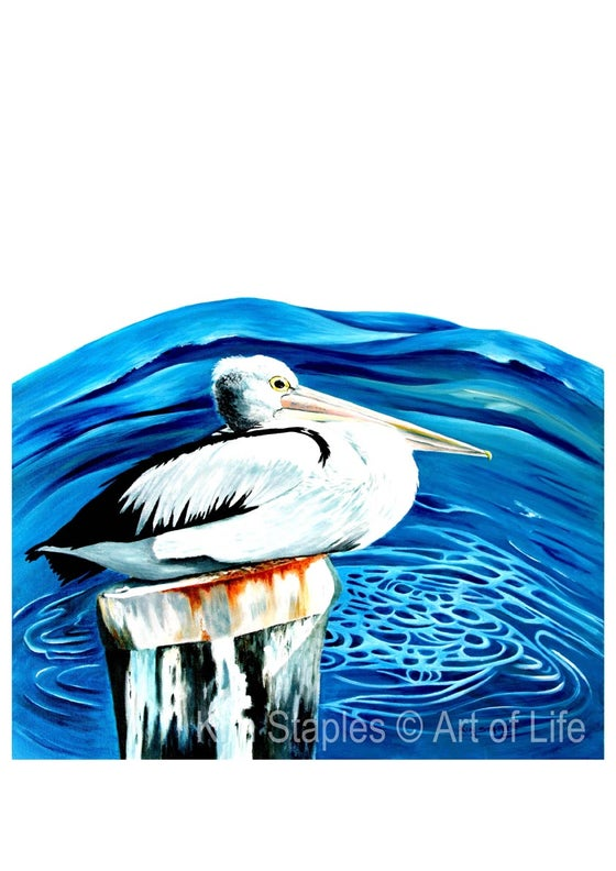 Image of Pelican keeper of the sea - PRINT
