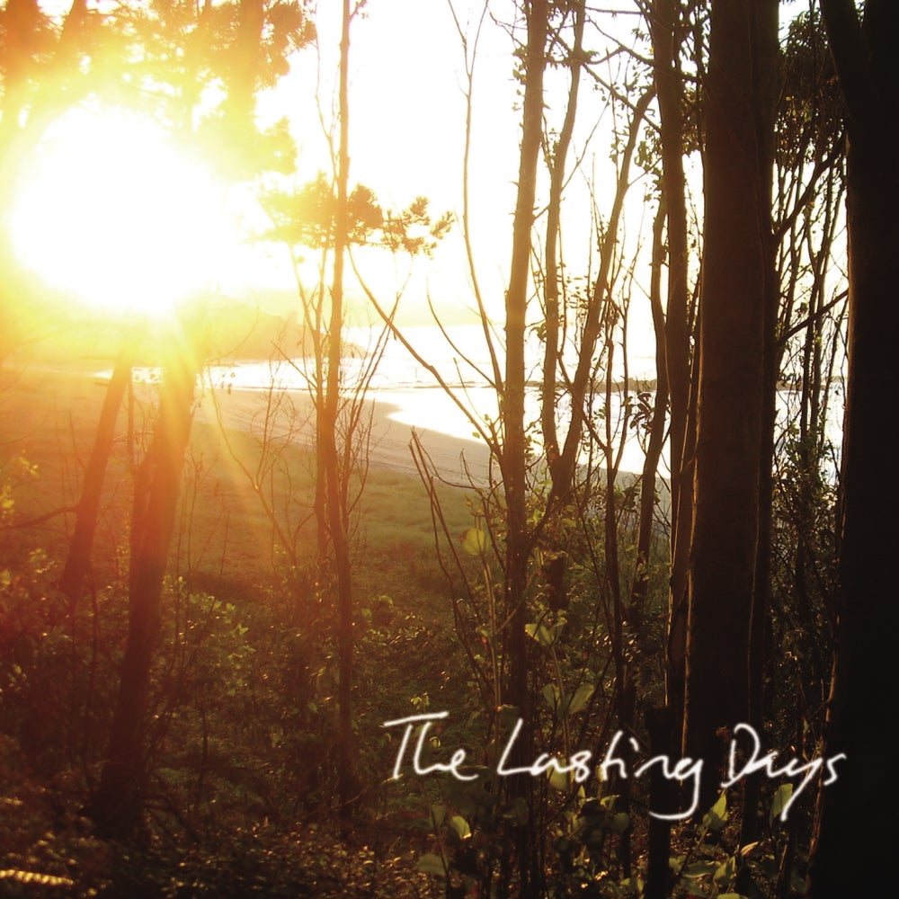 The Lasting Days - October, looking South