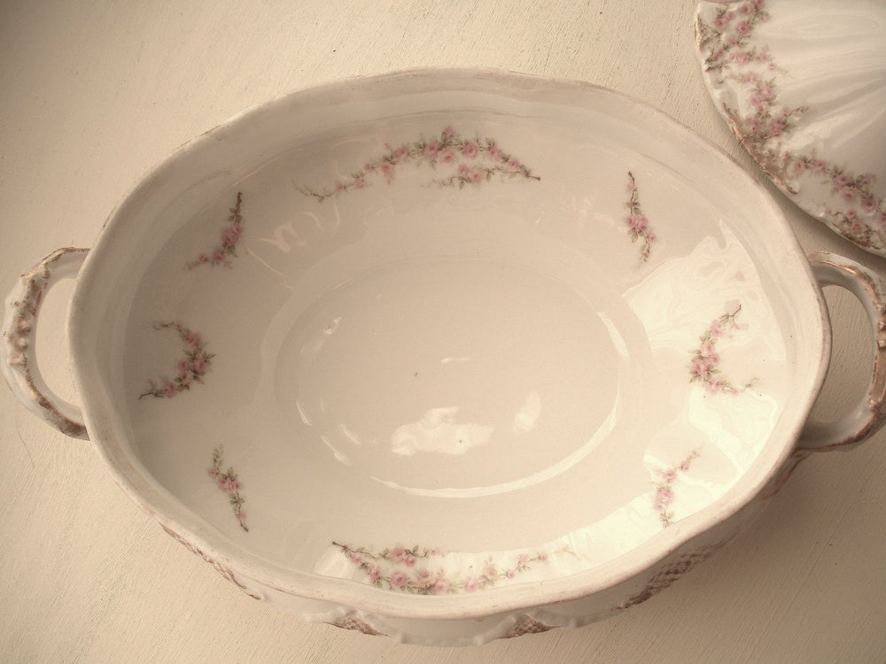 Image of Haviland Limoges