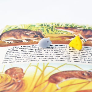 Image of Tiny Perspex Mouse & Cheese Earrings