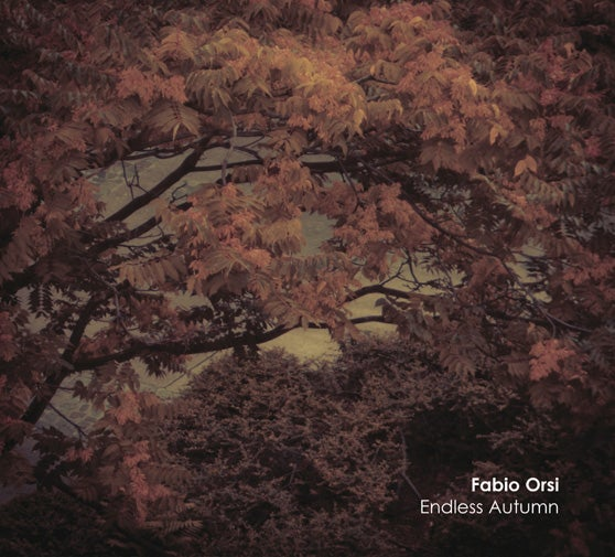 Image of FABIO ORSI - Endless Autumn CD